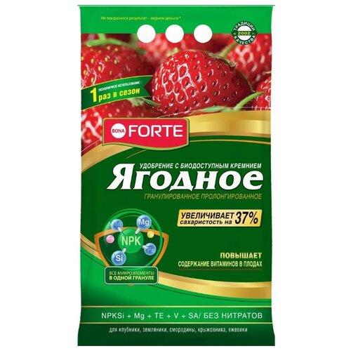 Удобрение BONA FORTE ягодное пролонгированное, 2.5 кг