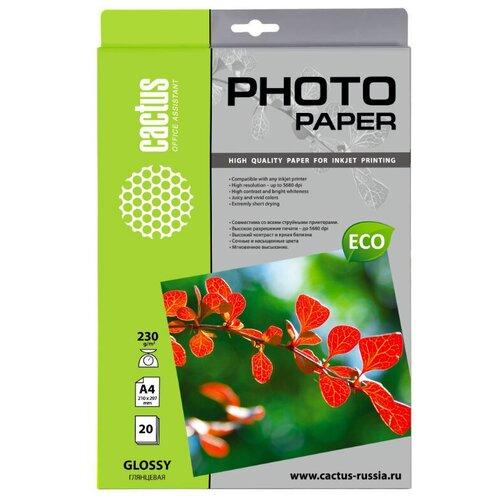 Фото - Фотобумага Cactus CS-GA423020E фотобумага