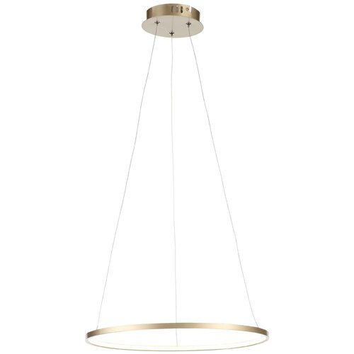 Светильник светодиодный ST Luce Erto SL904.203.01, LED, 12 Вт