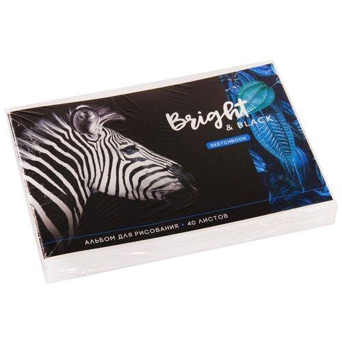Купить Набор альбомов для рисования ArtSpace Животные. Bright&black 29.7 х 21 см (A4), 100 г/м², 40 л. (5шт.) черный, Альбомы для рисования