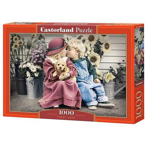 Купить Пазл Castorland First Love (C-104451), 1000 дет., Пазлы