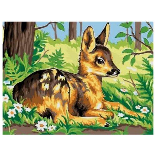 Купить Картина по номерам Цветной «Олененок на лугу» (холст на подрамнике, 30х40 см), Картины по номерам и контурам
