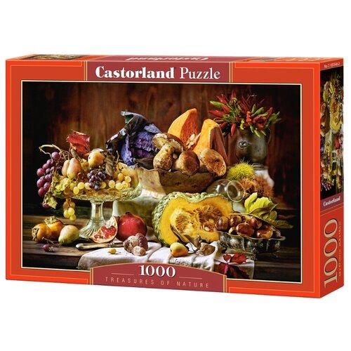 Пазл Castorland Treasure of Nature (C-103546) , элементов: 1000 шт.Пазлы<br>
