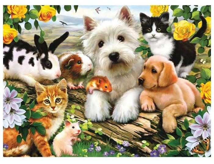 Открытки дружба животных, загрузить