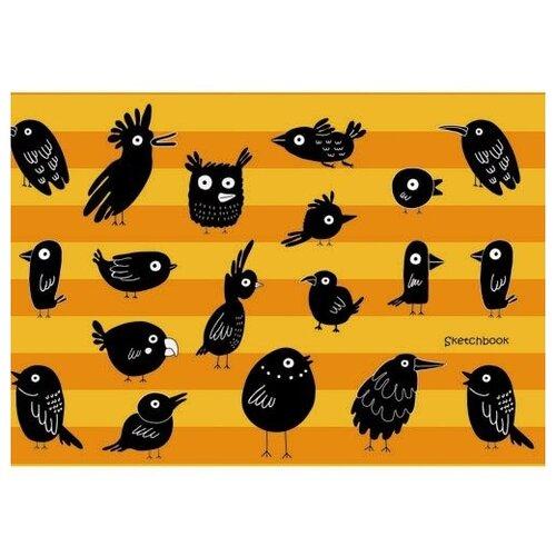 Купить Скетчбук Канц-Эксмо Озорные птицы 24.6 х 16.7 см, 100 г/м², 80 л., Альбомы для рисования