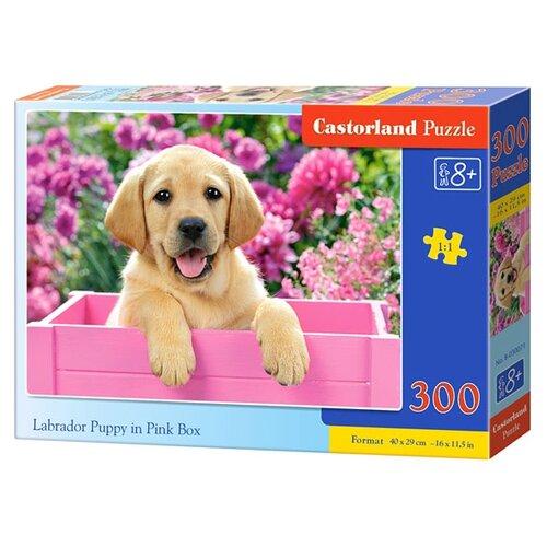 Купить Пазл Castorland Labrador Puppy in Pink Box (B-030071), 300 дет., Пазлы