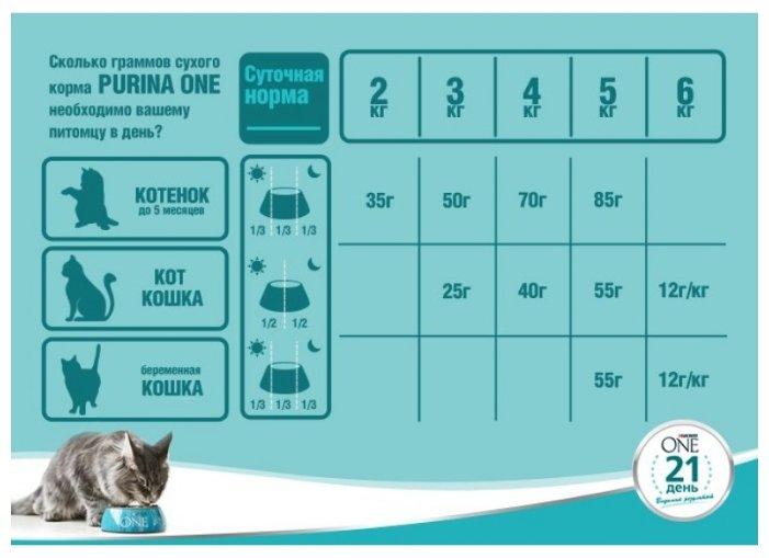 Сколько нужно давать корма котенку