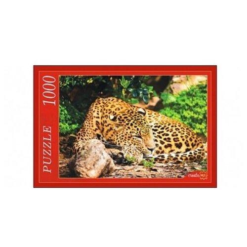 Фото - Пазл Рыжий кот Леопард (РК1000-7787), 1000 дет. пазл рыжий кот konigspuzzle россия йошкар ола гик1000 6534 1000 дет