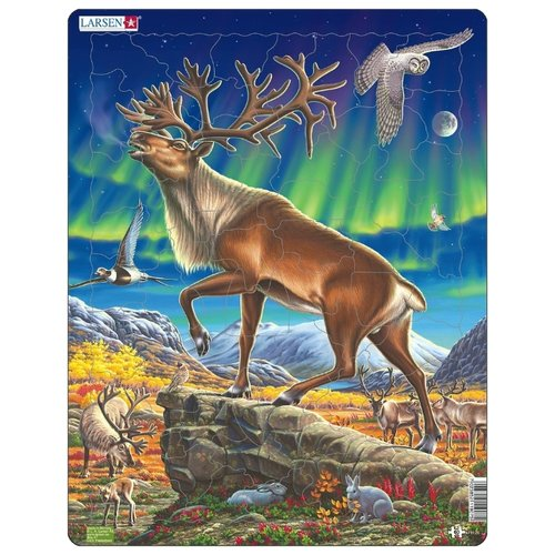 Купить Пазл Larsen Северный олень (FH26), 60 дет., Пазлы
