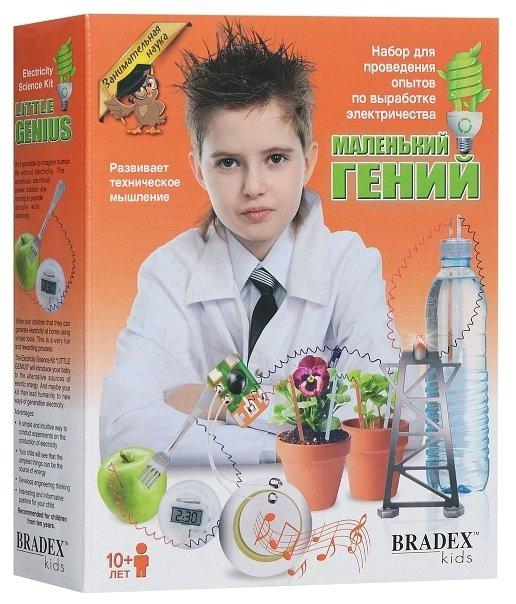 Набор BRADEX Занимательная наука. Маленький гений. Выработка электричества