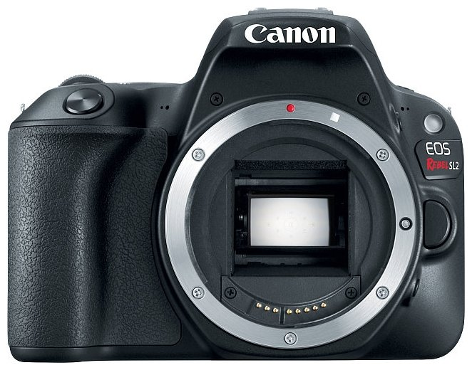 Canon Зеркальный фотоаппарат Canon EOS 200D Body