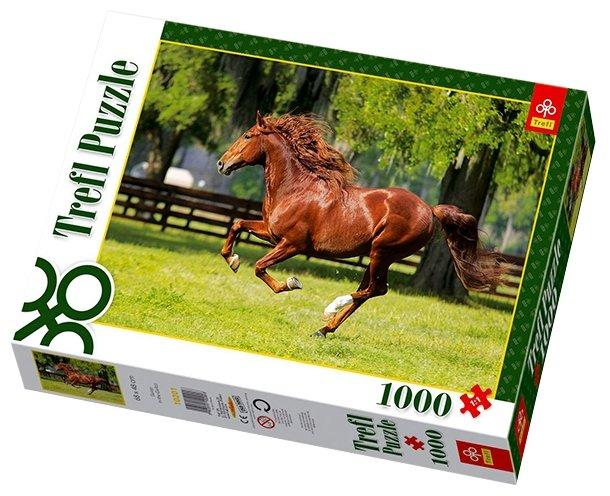 Пазл Trefl Мчатся кони (10201), 1000 дет.