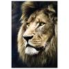 Пазл Trefl Портрет льва (26139), 1500 дет.