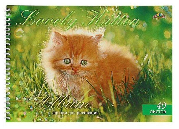 Альбом для рисования Апплика Рыжий котенок 29.7 х 21 см (A4), 110 г/м², 40 л.