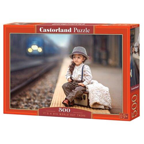 Купить Пазл Castorland It's aWorld Out There (B-52295), 500 дет., Пазлы