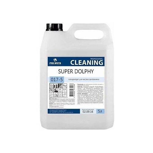 Фото - Pro-Brite гель для сантехники Super Dolphy 017, 5 л pro brite гель для сантехники active shine bleach cleaner цветочная свежесть 0 75 л