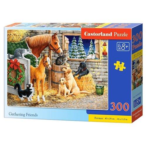 Купить Пазл Castorland Gathering Friends (B-030255), 300 дет., Пазлы