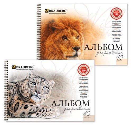 Альбом для рисования BRAUBERG Благородные кошки в ассортименте 29.7 х 21 см (A4), 110 г/м², 40 л.
