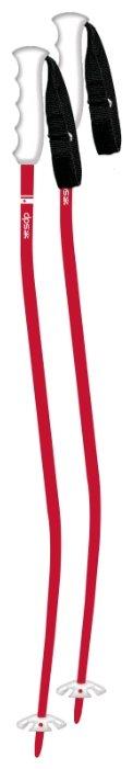 Палки для горных лыж DPS Zee Pole