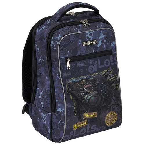 Фото - Ученический рюкзак ErichKrause ErgoLine Urban 18L Iguana iguana