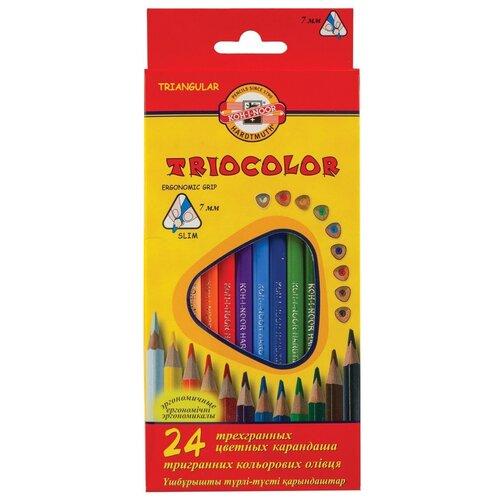 Купить Карандаши цветные KOH-I-NOOR Triocolor , 24 цвета, трехгранные, грифель 3, 2 мм (3134024004KSRU), Цветные карандаши