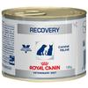 Корм для собак Royal Canin Recovery в период восстановления, при стрессе 12шт. х 195г