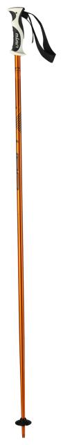 Палки для горных лыж Elan Speedrod