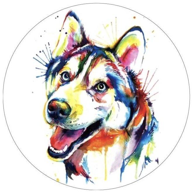 Цветной Вышивка крестом Разноцветный щенок 28 х 28 см (VE001)