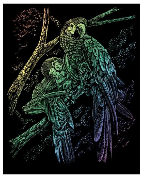 Гравюра Royal & Langnickel Тропические птицы (RAIN13) цветная основа