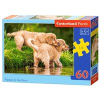 Пазл Castorland Puppies by the River (B-06946) , элементов: 60 шт.