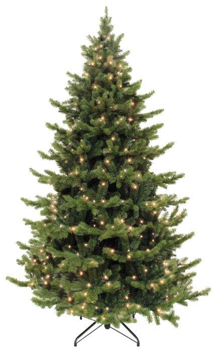 Triumph Tree Ель Шервуд Премиум (лампы)--