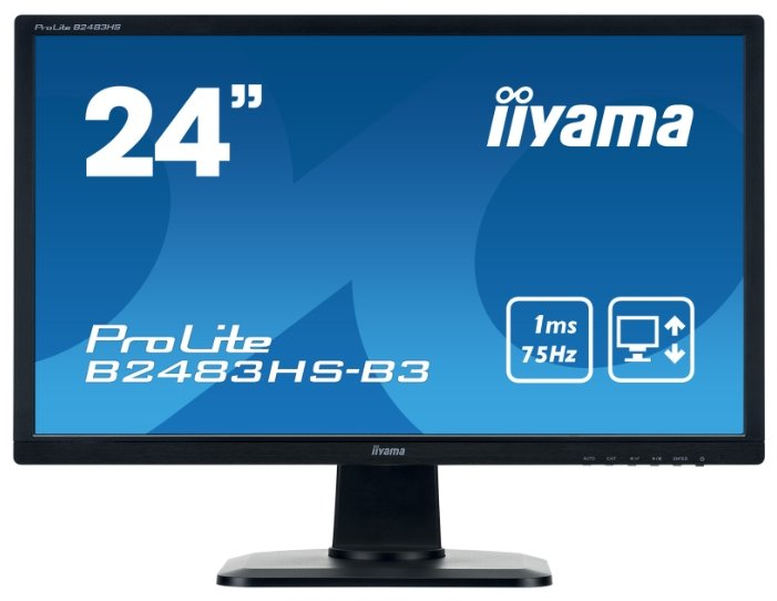 Монитор Iiyama ProLite B2483HS-3