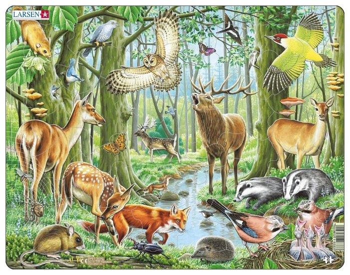 Рамка-вкладыш Larsen Европейский лес (FH17), 40 дет.