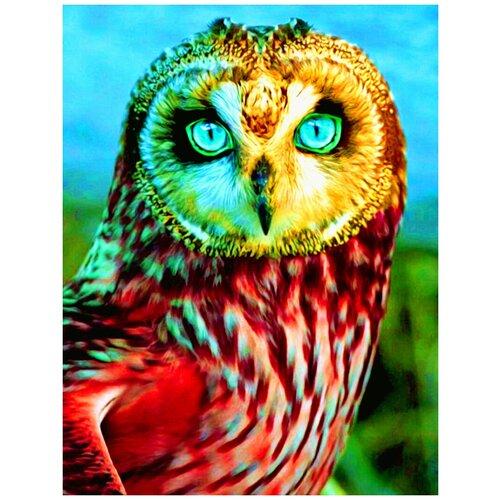 Купить Рыжий кот картина по номерам Пронзительный взгляд совы 22 х 30 см (HS270), Картины по номерам и контурам
