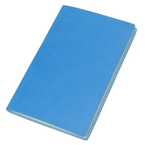 Блокнот А6 Riner, голубой по цене 403