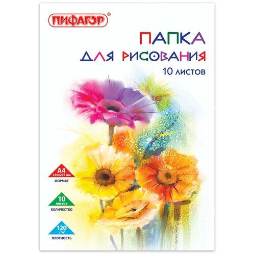 Фото - Папка для рисования Пифагор Цветы 29.7 х 21 см (A4), 120 г/м², 10 л. папка для рисования апплика маяк 29 7 х 21 см a4 100 г м² 20 л синий