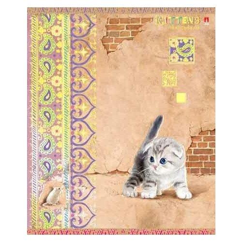 Тетради 48 листов серия  Кошки-мышки Набор 5 шт. Цена за 5 штук. тетради 48 листов в клетку серия премиум металлик набор 5 шт цена за 5 штук