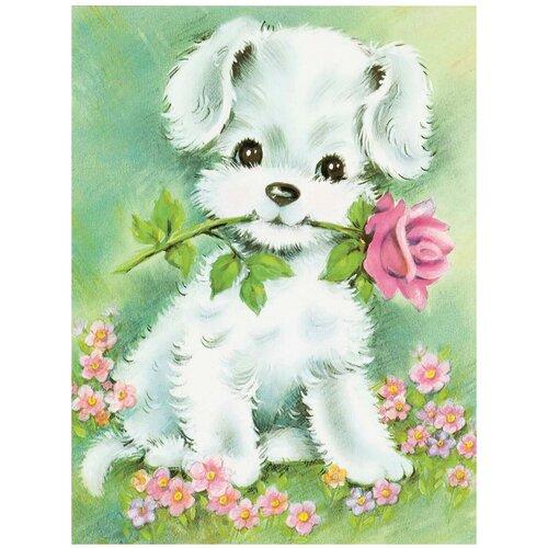 рыжий кот картина по номерам сиреневые и белые цветы 30x40 см х 3712 Рыжий кот Картина по номерам Щенок с цветочком 30x40 см (Х-3727)