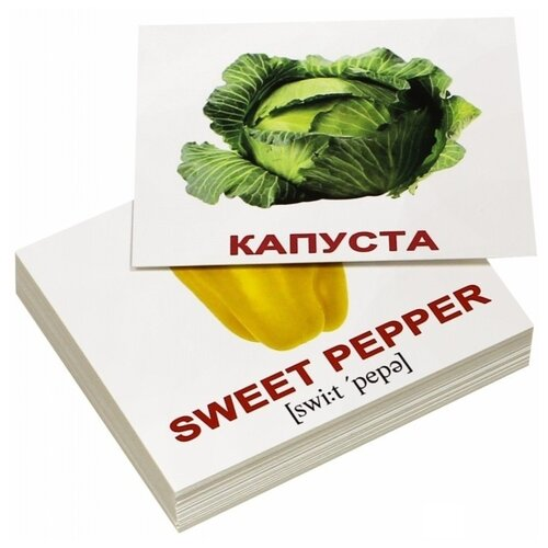 Фото - Набор карточек Вундеркинд с пелёнок Vegetables/Овощи с транскрипцией 10x8 см 40 шт. набор карточек вундеркинд с пелёнок мини 40 праздники 10x8 см 40 шт