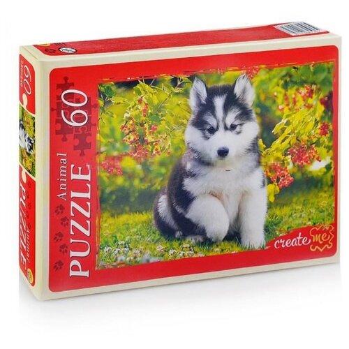 Фото - Пазл Рыжий кот Щенок хаски в саду 60 элементов пазл рыжий кот 3в1 мир динозавров 49 элементов