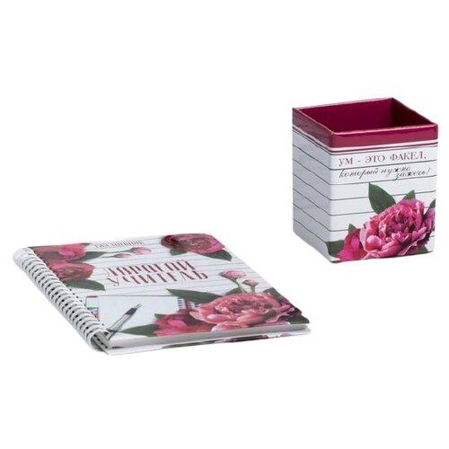 Купить Канцелярский набор ArtFox Дорогому учителю (4199040), 2 пр., розовый/белый, Офисные наборы