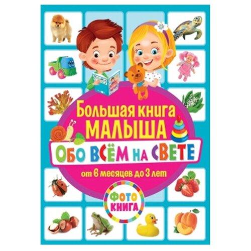 Купить Большая книга малыша обо всём на свете. От 6 месяцев до 3 лет. Фотокнига, Владис, Книги для малышей