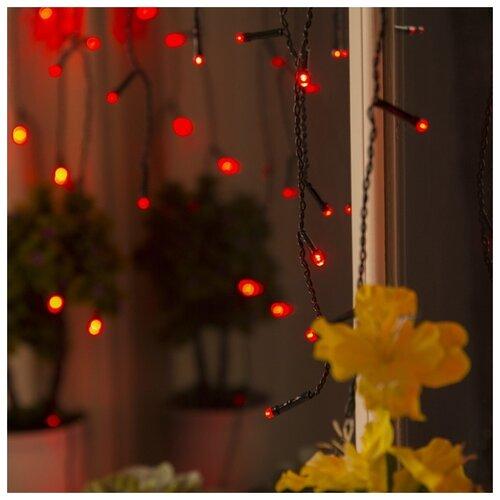 Гирлянда Luazon Lighting Бахрома 80 LED, 300х50 см, 80 ламп, красный/черный провод гирлянда уличная lotti бахрома 480 led