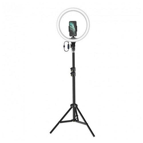 Фото - Кольцевая лампа Baseus Live Stream Holder-floor Stand (12-inch Light Ring) Черный CRZB12-B01 geometric pattern floor mat