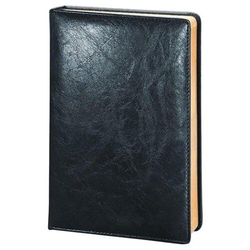 Купить Ежедневник InFolio Challenge недатированный, искусственная кожа, А5, 160 листов, синий, Ежедневники