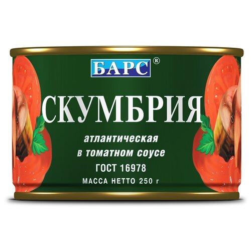 Фото - БАРС Скумбрия атлантическая в томатном соусе, 250 г скумбрия холодного копчения ашан атлантическая резаная крупная 500 г