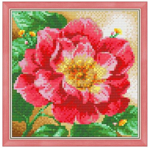 Купить Алмазная живопись Набор алмазной вышивки Цветущий пион (АЖ-1444) 20х20 см, Алмазная вышивка