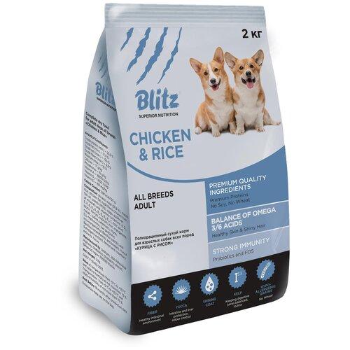 Фото - Сухой корм для собак Blitz курица, с рисом 2 кг сухой корм для собак chicopee курица с рисом 2 кг