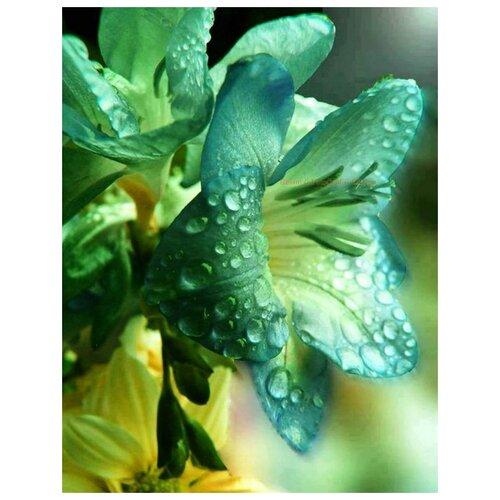 Купить Алмазная вышивка Яркие Грани Лилия , размер 38х50см, 51 цвет