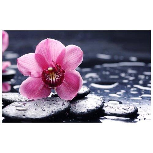 Купить Алмазная вышивка Яркие Грани Орхидея и камни , размер 50х31см, 51 цвет
